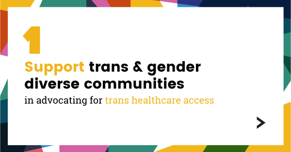 Support trans and gender diverse communities in advocating for trans healthcare access.